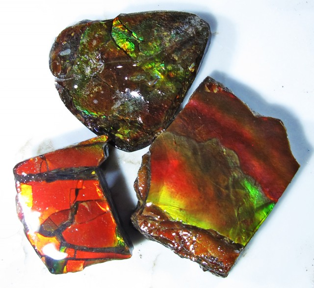 30.86 CTS AMMOLITE  ROUGH PARCEL SPECIMEN FROM CANADA  F4771