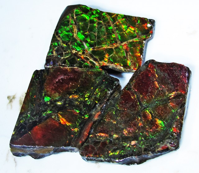 33.31 CTS AMMOLITE  ROUGH PARCEL SPECIMEN FROM CANADA  F4776