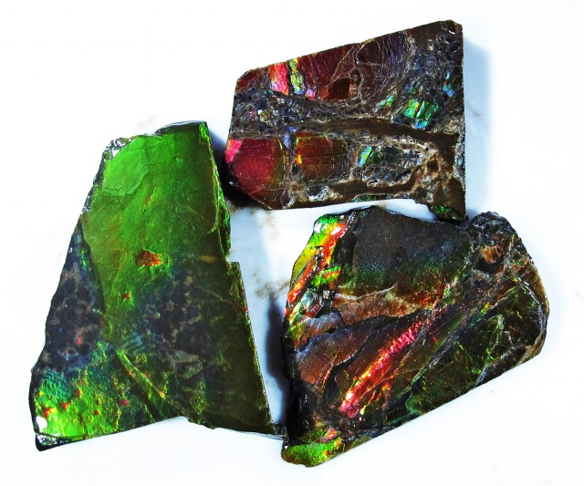 35.76 CTS AMMOLITE  ROUGH PARCEL SPECIMEN FROM CANADA  F4777