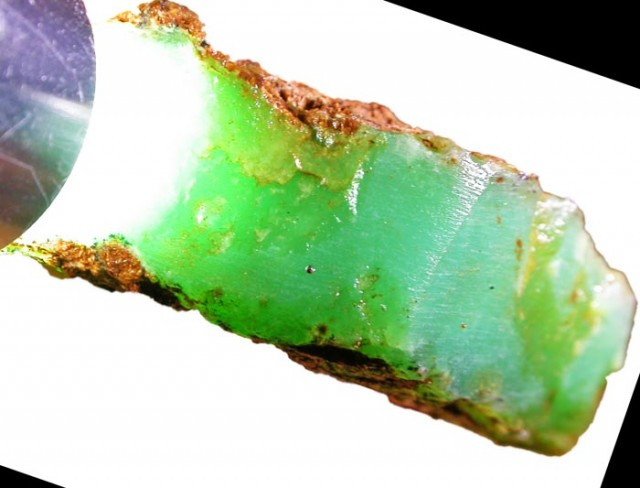 171.4 CTS CHRYSOPRASE ROUGH WEST AUSTRALIA[FLA306]