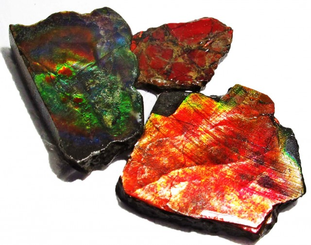 23.96 CTS AMMOLITE  ROUGH PARCEL SPECIMEN FROM CANADA  F5161