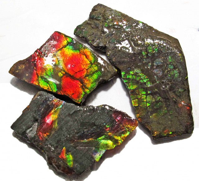 42.86 CTS AMMOLITE  ROUGH PARCEL SPECIMEN FROM CANADA  F5167