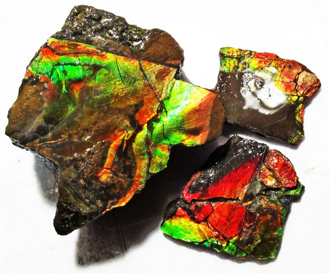 91.92 CTS AMMOLITE  ROUGH PARCEL SPECIMEN FROM CANADA  F5168