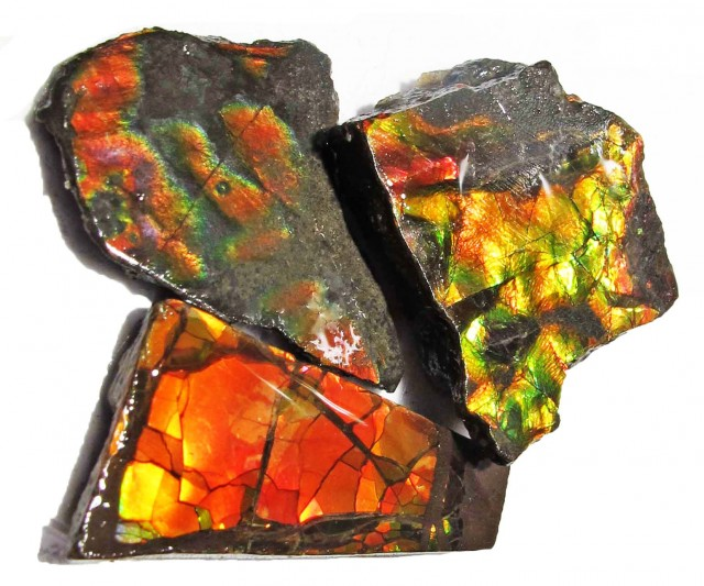 32.22 CTS AMMOLITE  ROUGH PARCEL SPECIMEN FROM CANADA  F5190