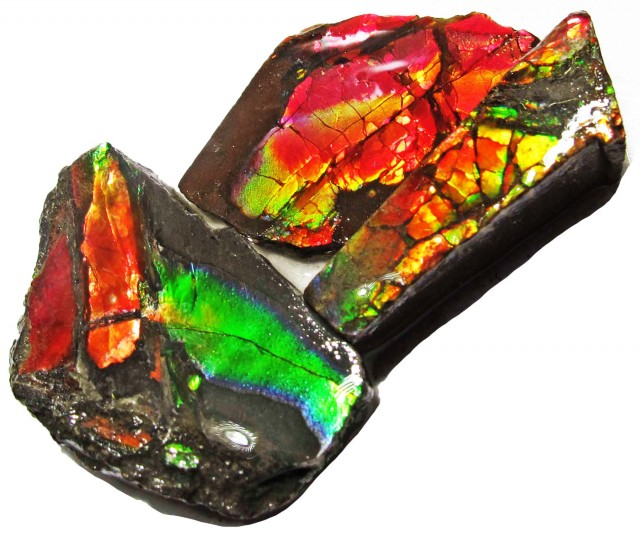 46.46 CTS AMMOLITE  ROUGH PARCEL SPECIMEN FROM CANADA  F5194