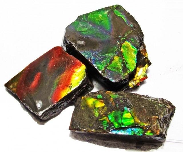 56.85 CTS AMMOLITE  ROUGH PARCEL SPECIMEN FROM CANADA  F5201