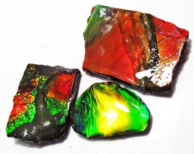 16.57 CTS AMMOLITE  ROUGH PARCEL SPECIMEN FROM CANADA  F5211