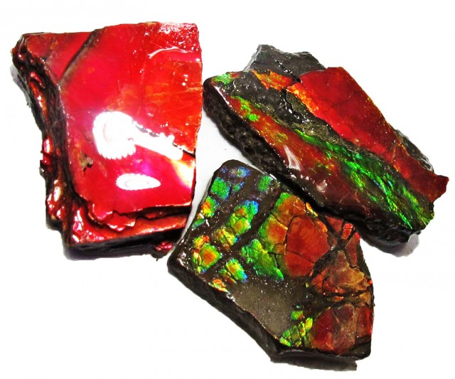 47.71 CTS AMMOLITE  ROUGH PARCEL SPECIMEN FROM CANADA  F5236