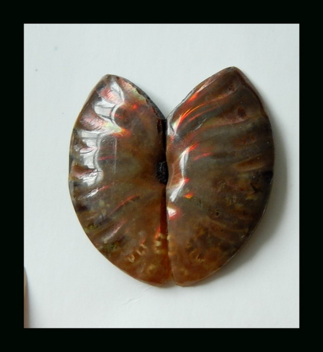 21.6 CTS Twinkle  Natural Ammonite Cabochon Pair  ^ Fossil Cabochon , 26x12