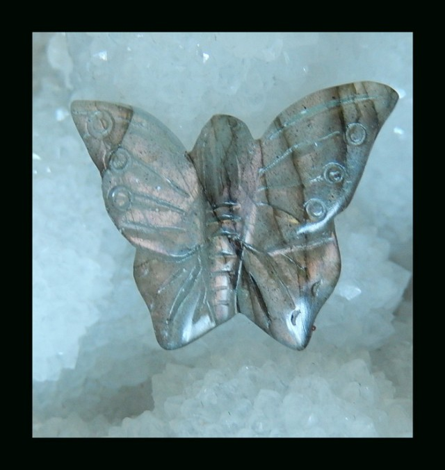 Butterfly carving Labradorite Cabochon , 26x21x5 MM , 17.5 cts