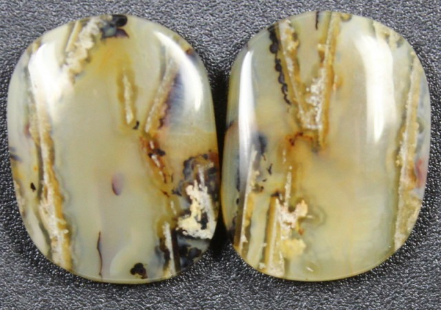 12.1 CTS WYOMING AGATE PAIR PERFECT FOR EARRINGS