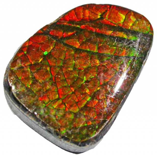 20.4 CTS NEON BRIGHT AMMOLITE DOUBLET [MGW4425]