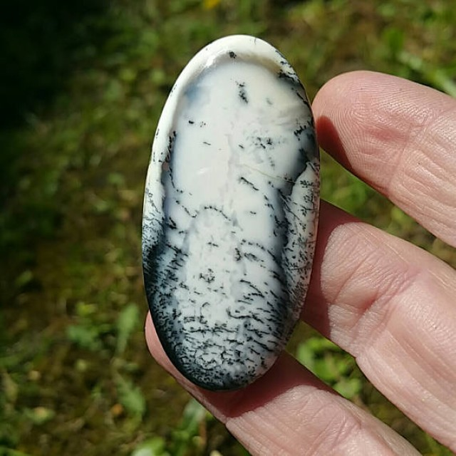 55mm dendritic agate oval 60ct