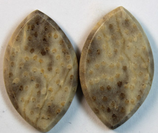 23.90 CTS JASPER PAIR POLISHED STONE GREAT RANGE IN STORE