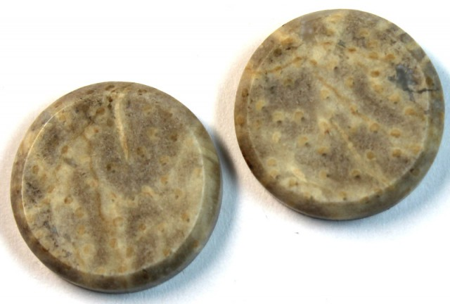 29.40 CTS JASPER PAIR POLISHED STONE GREAT RANGE IN STORE