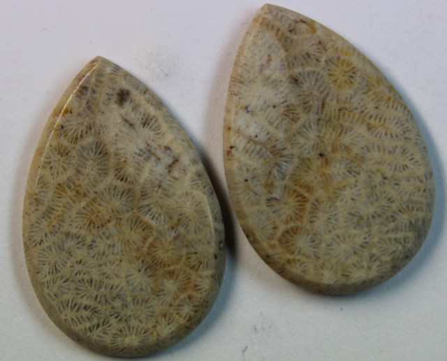 32.45 CTS  PAIR OF POLISHED CORAL NATURAL STONES