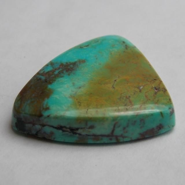 16.69ct Bisbee Turquoise