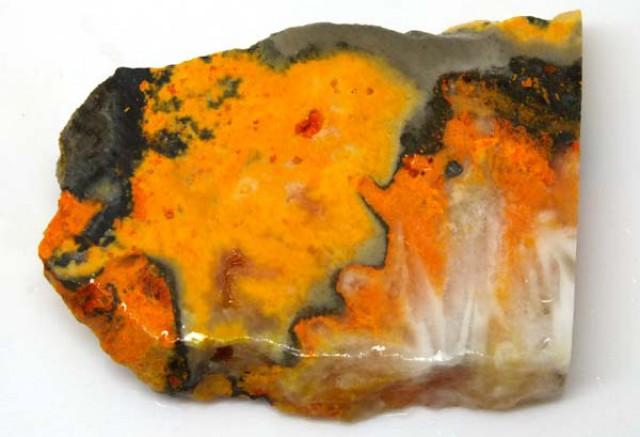 127 CTS BUMBLE  BEE JASPER ROUGH SLAB -INDONESIA [F5782 ]