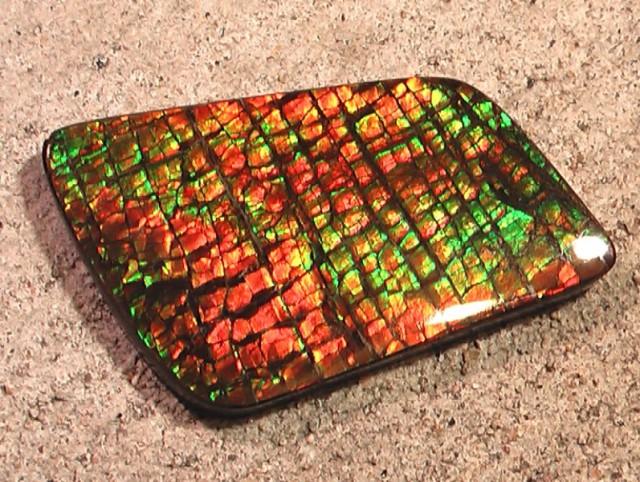$$$ REDUCED $$$ FLAWLESS COLORFUL DRAGONSKIN LARGE Natural Ammolite Gem