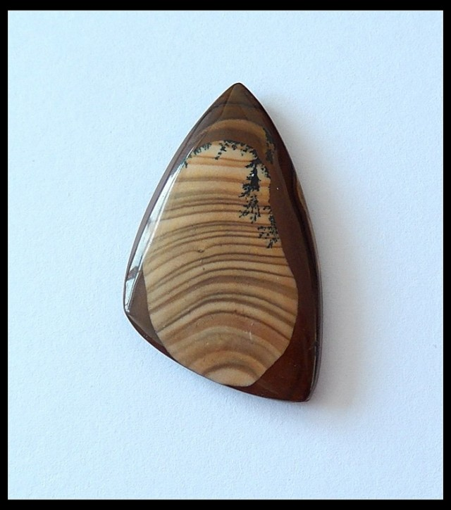 23.6 Ct Polished US Picture Jasper Cabochon