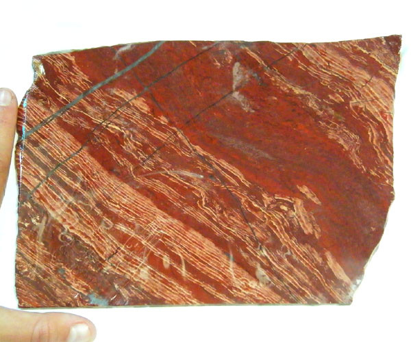 ROUGH AUSSIE VEIN  JASPER  TO POLISH 509 GRAMS  MY 893