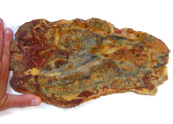 ROUGH AUSSIE CRAZY JASPER  TO POLISH 546 GRAMS  MY 899