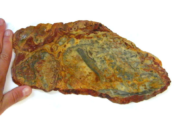 ROUGH AUSSIE CRAZY JASPER  TO POLISH 418 GRAMS  MY 901