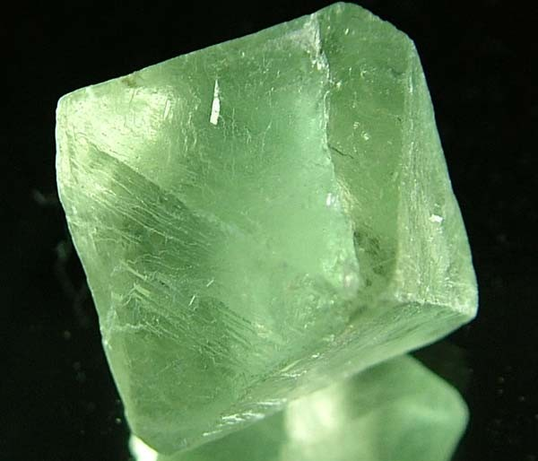 NATURAL FLUORITE CRYSTALS FROM ARGENTIA 19.6 CTS [MX531]