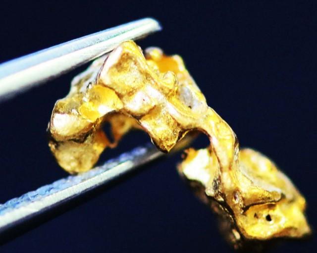 0. 46 Grams  AUSTRALIAN  Gold  Nugget LGN 1305