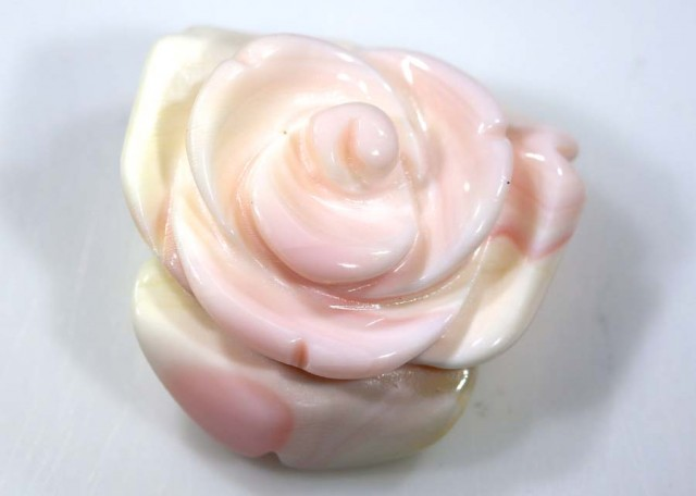 19.8 CTS CONCH SHELL ROSE CARVING HALF DRILLED LT-349