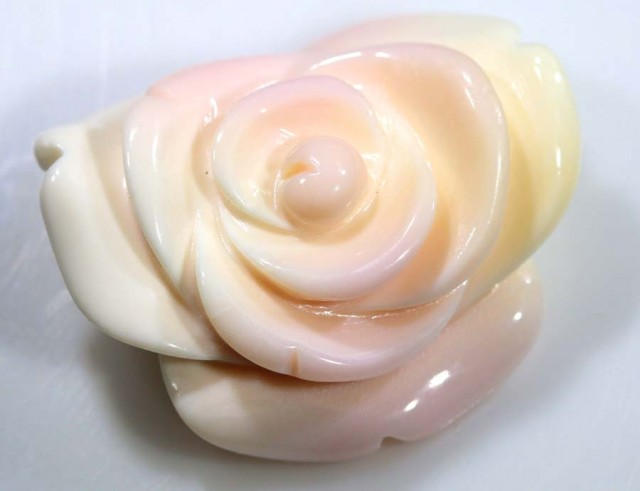 21.95 CTS CONCH SHELL ROSE CARVING HALF DRILLED LT-358