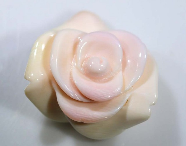 23.45 CTS CONCH SHELL ROSE CARVING HALF DRILLED LT-359