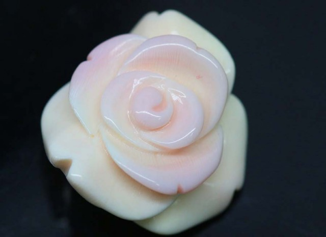 19.80 CTS CONCH SHELL FLOWER DRILLED LT-551
