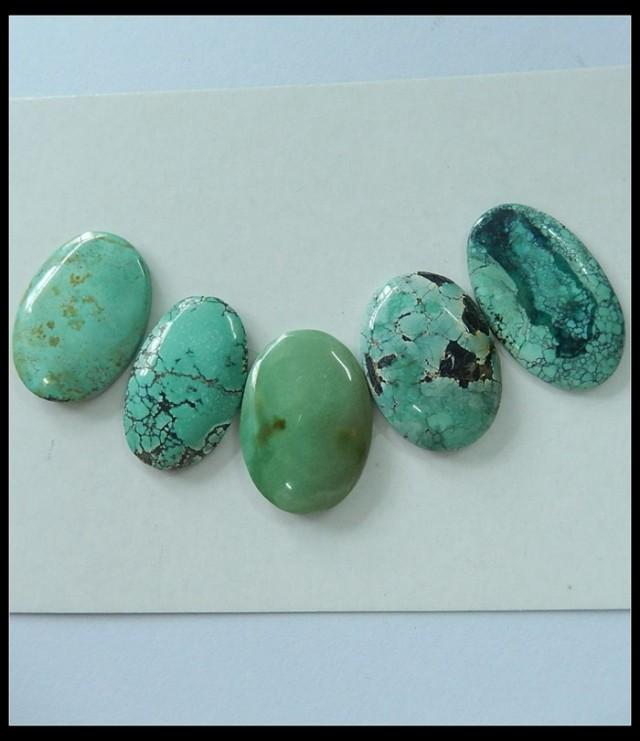 5 Pcs Turquoise Gemstone Cabochons Set