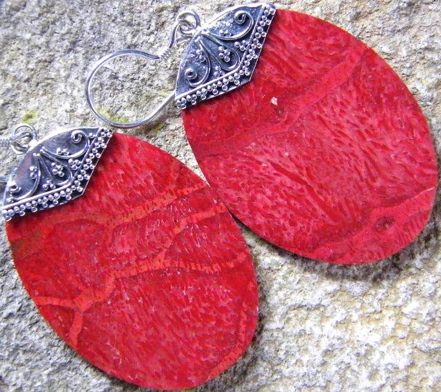 RED CORAL  EARRINGS -STABILIZED  24.15 CTS [SJ251]