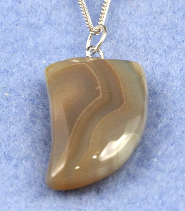 Fancy Agate Tooth Pendant on Sterling Silver Chain  TCA-02