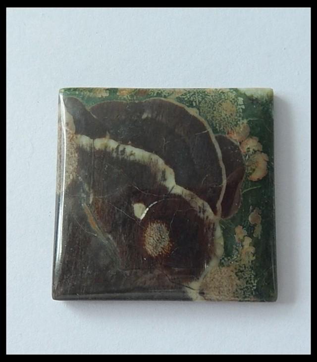 68.5cts Natural Mushroom Jasper Cabochon