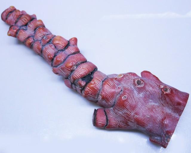 1305Cts Natural red coral specimen   BU1721