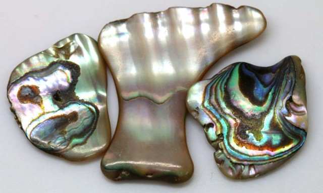 20.90 CTS ABALONE SHELL PARCEL (3PCS) ADG-1165