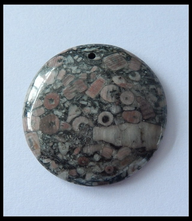 78.5Cts Natural Crinoid Round Bead