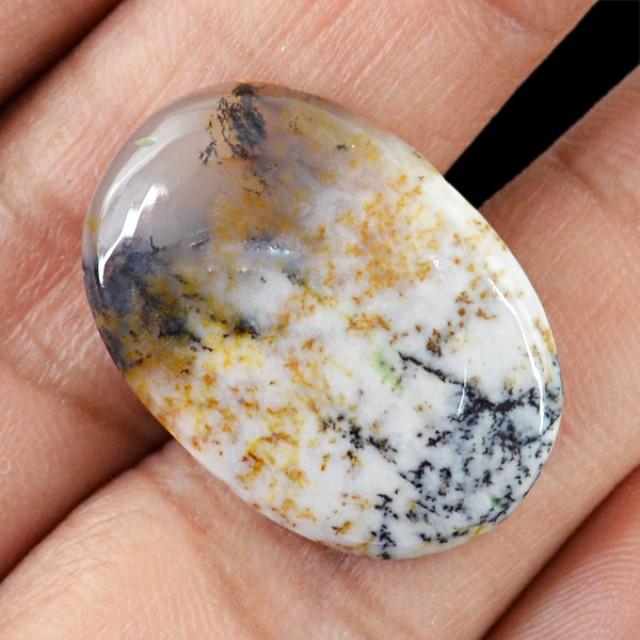 Genuine 15.00 Cts Dendrite Opal Oval Shaped Cab