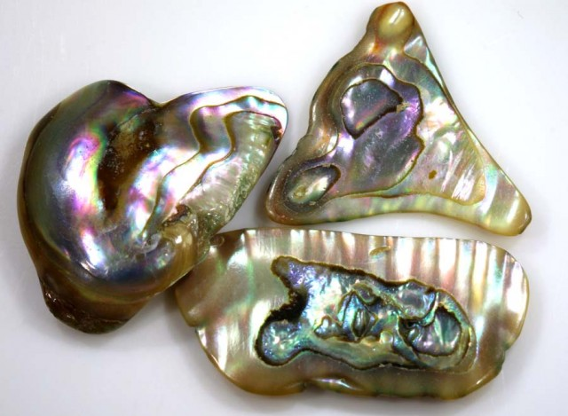 17.25 CTS ABALONE SHELL PARCEL (3PCS) ADG-1371