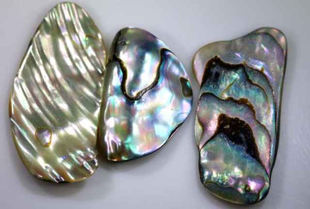 30.85 CTS ABALONE SHELL PARCEL (3PCS) ADG-1381