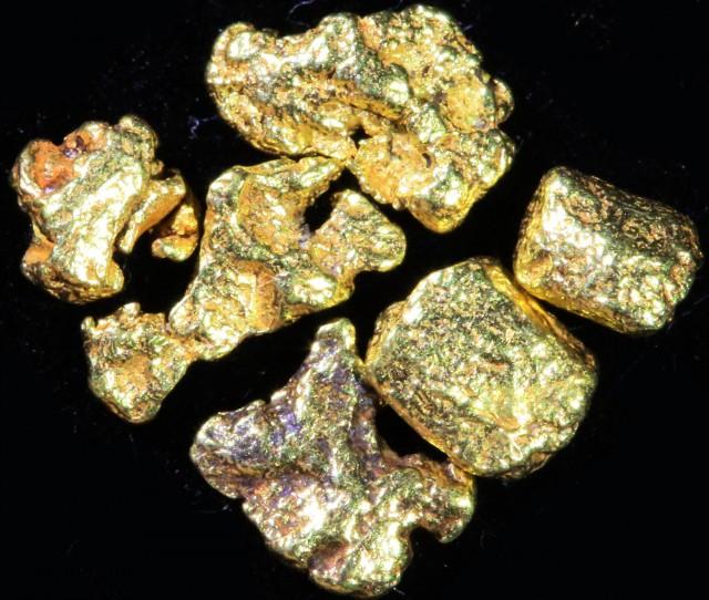 0.5 Gram 10 screen Yukon Gold nuggets LGN 1413