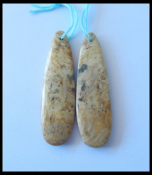 37.7Ct Natural Palm Wood Fossil Earring Beads