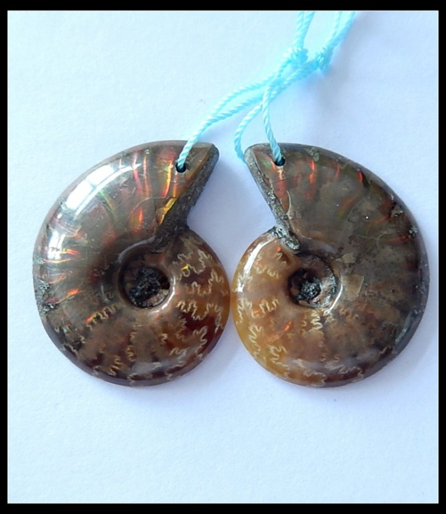 43.5 Ct Natural Ammonite Gemstone Earring Bead(A1811)