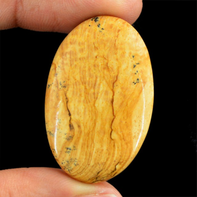 Genuine 44.75 Cts Picture Jasper Oval Shaped Cab