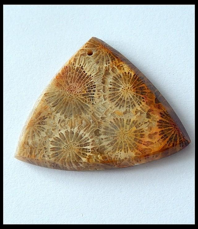 41CT Natural Coral Gemstone Bead