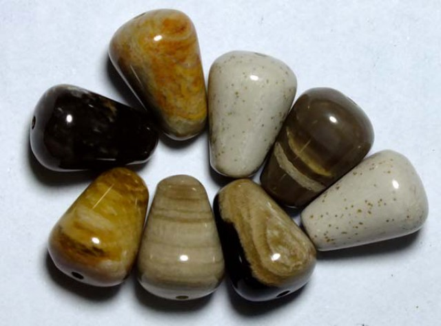 PETRIFIED WOOD BEADS (8PC) 35.95CTS NP-844
