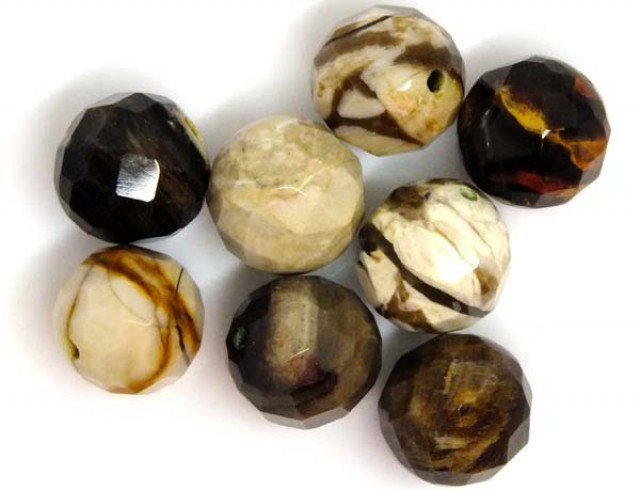 PETRIFIED WOOD BEADS, (8 PC) 66 CTS  NP-1199